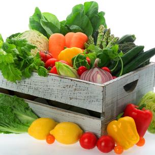 穫れたて野菜の集合の写真素材 [FYI01946375]