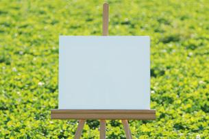 草原とキャンバスの写真素材 [FYI01946411]