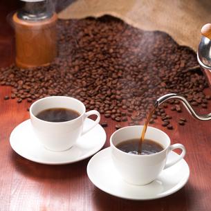コーヒーと豆の写真素材 [FYI01946589]