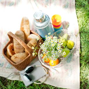 ピクニックセットの写真素材 [FYI01946771]