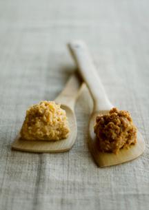 木べらの上の味噌の写真素材 [FYI01946833]