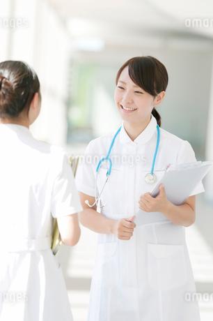 打合せをする2人の看護師の写真素材 [FYI01947059]