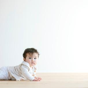 ハイハイをする赤ちゃんの写真素材 [FYI01947838]
