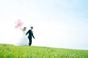 草原で手をつなぐ新郎新婦の写真素材 [FYI01948007]