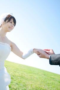 草原で結婚指輪をはめる新郎新婦の写真素材 [FYI01948075]