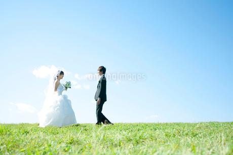 草原で向き合う新郎新婦の写真素材 [FYI01948097]