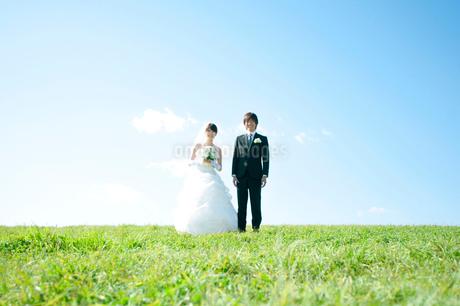 草原に立ち微笑む新郎新婦の写真素材 [FYI01948109]