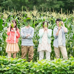 葉っぱで作ったお面を持ち微笑む大学生の写真素材 [FYI01948228]