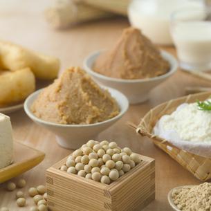 大豆と大豆製品の写真素材 [FYI01948996]