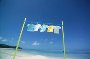 海辺で干したTシャツ クラフトの写真素材 [FYI01949106]