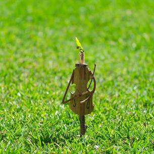 草原でチェロを弾く木の人形 クラフトの写真素材 [FYI01949423]