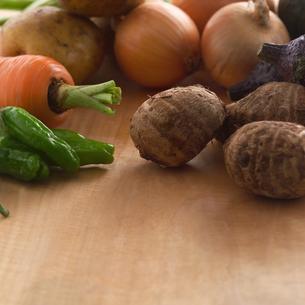 秋野菜の写真素材 [FYI01949523]