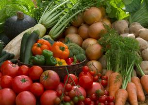 新鮮野菜いろいろの写真素材 [FYI01949696]