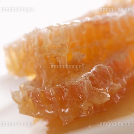 巣蜜の写真素材 [FYI01949815]