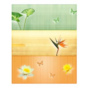花と蝶のオリエンタルイメージのイラスト素材 [FYI01950010]