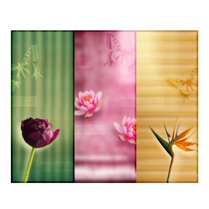 花と蝶のオリエンタルイメージのイラスト素材 [FYI01950056]