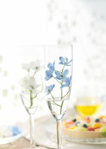 グラスに飾った花とフルーツタルトの写真素材 [FYI01950252]