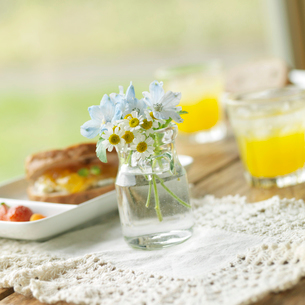 カフェのテーブルの上に飾った野花とランチの写真素材 [FYI01950474]