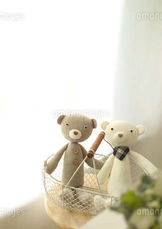 クマのカップルの写真素材 [FYI01950685]