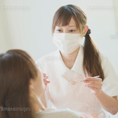 患者の歯の検診をする歯科助手の写真素材 [FYI01950701]