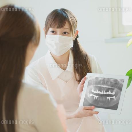 患者に説明をする歯科助手の写真素材 [FYI01950747]
