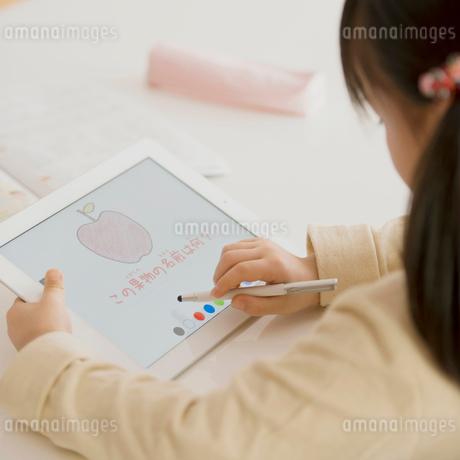 タブレットPCで勉強をする女の子の写真素材 [FYI01950795]