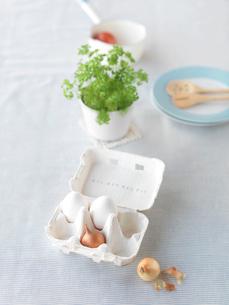 パセリや卵を使った食品イメージの写真素材 [FYI01950807]