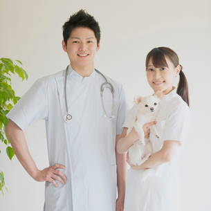 犬を抱き微笑む獣医の写真素材 [FYI01950895]