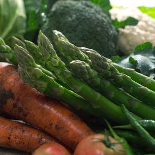 穫れたての野菜の集合とアスパラの写真素材 [FYI01951142]