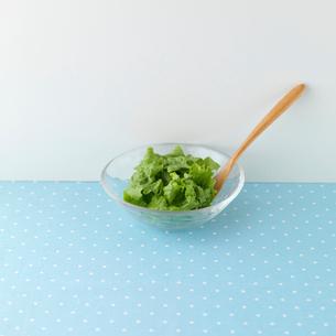 グリーンサラダの写真素材 [FYI01951143]