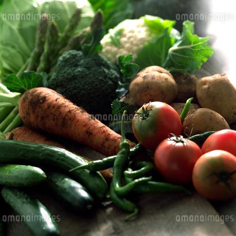 畑の土の付いたままの野菜の写真素材 [FYI01951402]
