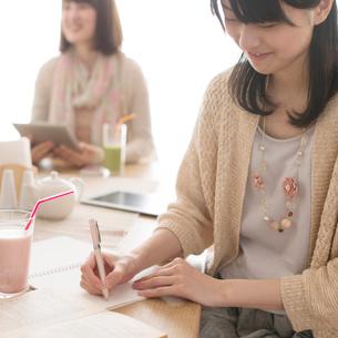 カフェで勉強をする大学生の写真素材 [FYI01951479]