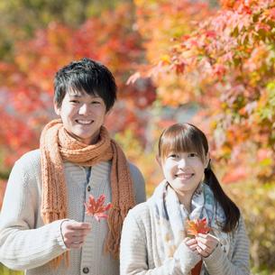 紅葉を持ち微笑むカップルの写真素材 [FYI01951590]