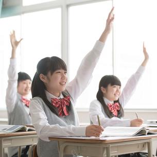 教室で手を挙げる女子校生の写真素材 [FYI01951692]