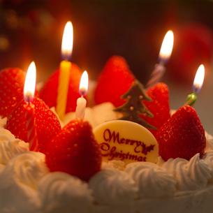 クリスマスケーキの写真素材 [FYI01951748]