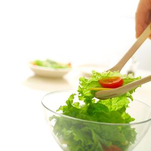 サラダを作る人の写真素材 [FYI01952182]