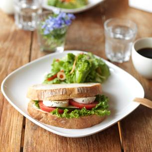 パンとサラダのあるカフェのワンプレートランチの写真素材 [FYI01952577]