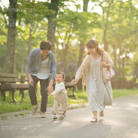公園を歩く親子の写真素材 [FYI01952698]