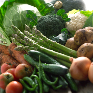 穫れたての野菜の集合の写真素材 [FYI01952887]