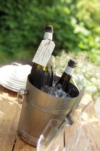 ワインクーラーとワインの写真素材 [FYI01953103]