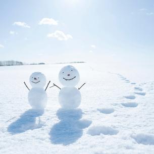 雪だるまと雪原の写真素材 [FYI01953128]