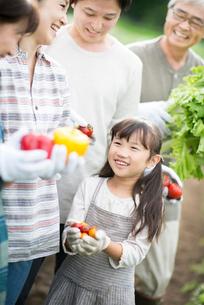 収穫した野菜を持ち微笑む3世代家族の写真素材 [FYI01953283]