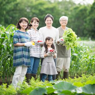収穫した野菜を持ち微笑む3世代家族の写真素材 [FYI01953760]