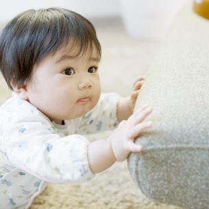 つかまり立ちをしようとする赤ちゃんの写真素材 [FYI01954513]