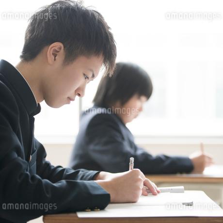 教室で勉強をする学生の写真素材 [FYI01954523]