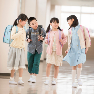 学校の廊下を歩く小学生の写真素材 [FYI01954590]