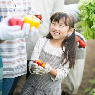 ミニトマトを持ち微笑む女の子の写真素材 [FYI01954646]