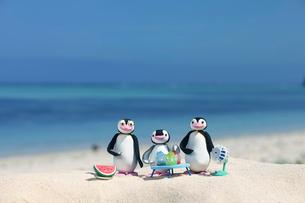 海辺で涼むペンギン家族 クラフトの写真素材 [FYI01954711]