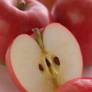ふたつに割ったりんごの写真素材 [FYI01955020]