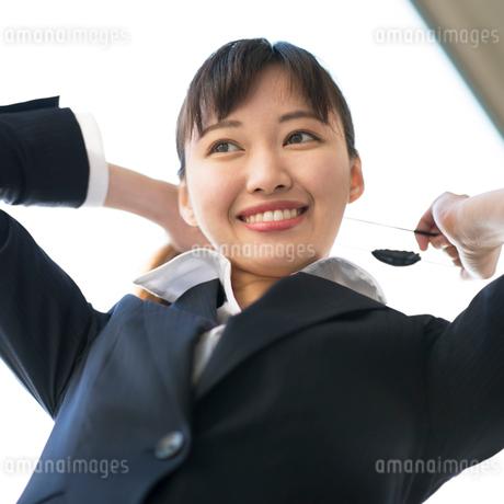 髪をまとめるビジネスウーマンの写真素材 [FYI01955192]